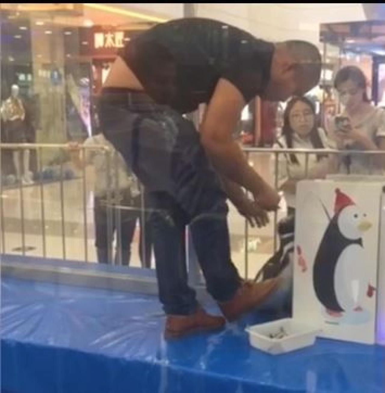 內蒙古萬達廣場飼養員用腳踢企鵝。   (影片截圖)