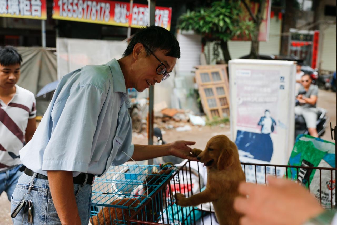2017年6月20日,備受爭議的廣西玉林狗肉節將至。(梁鵬威攝)
