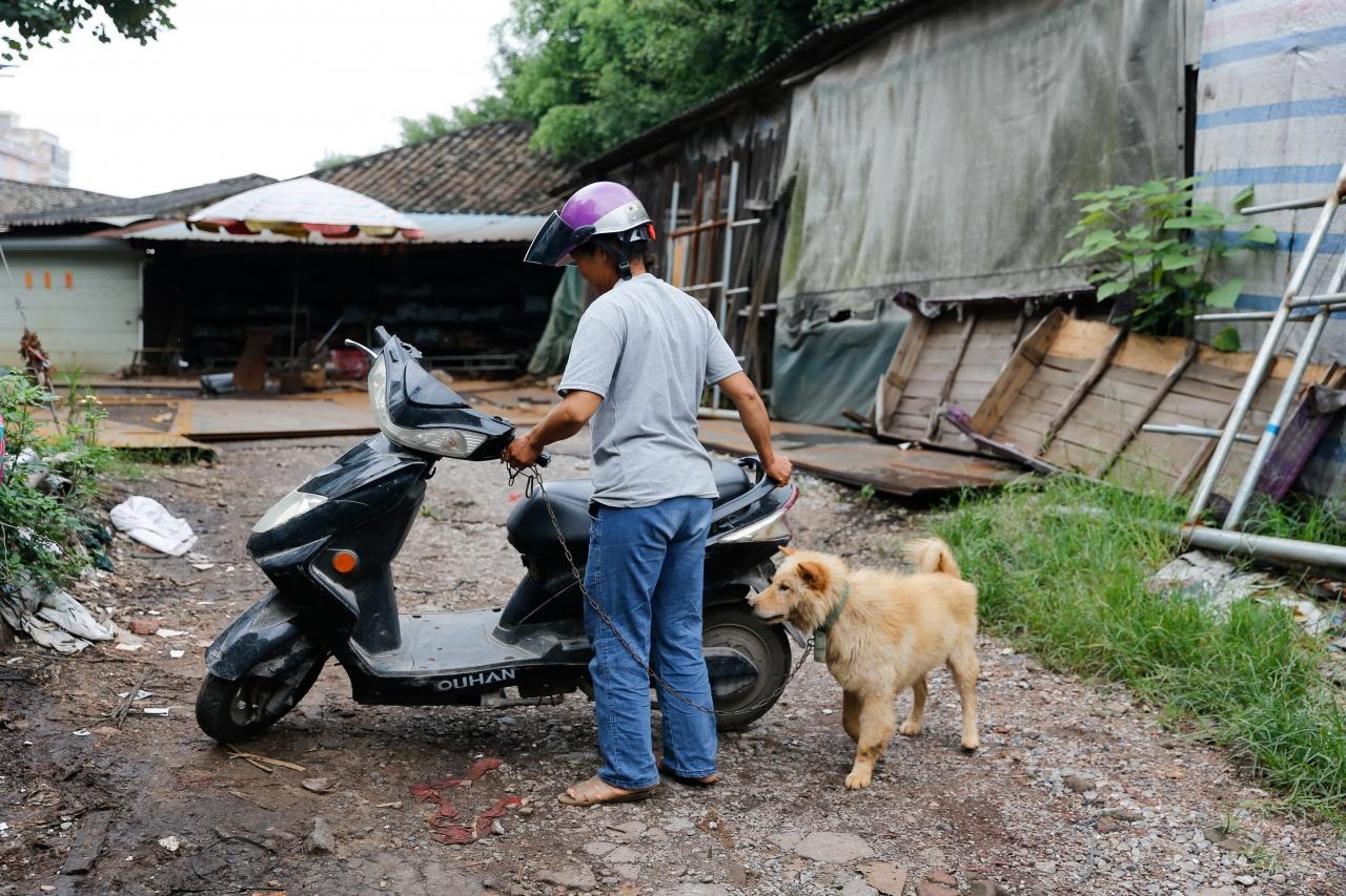 2017年的廣西玉林狗肉節將至,香港01記者日前到達當地,多個「著名景點」均未見NGO組織或記者,狗販亦沒有往年當街殺狗行為,政府防控卻比往年更厲害。(梁鵬威攝)