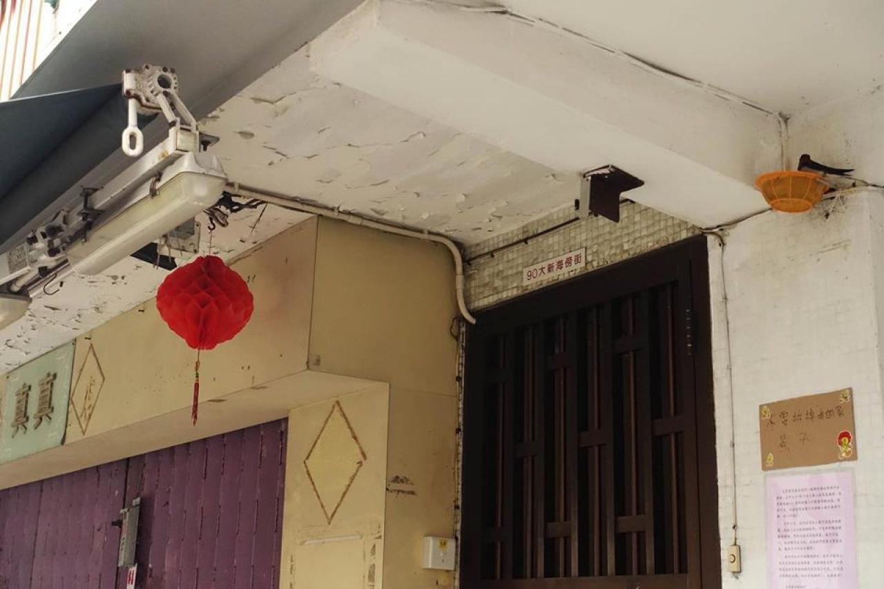雙燕今年4月重臨舊地。(Facebook專頁「長洲足跡」圖片)