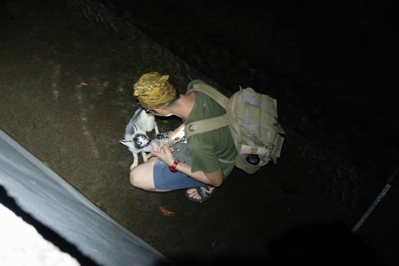 發現小狐狸當日,熱心行山人士上前餵食。(資料圖片)