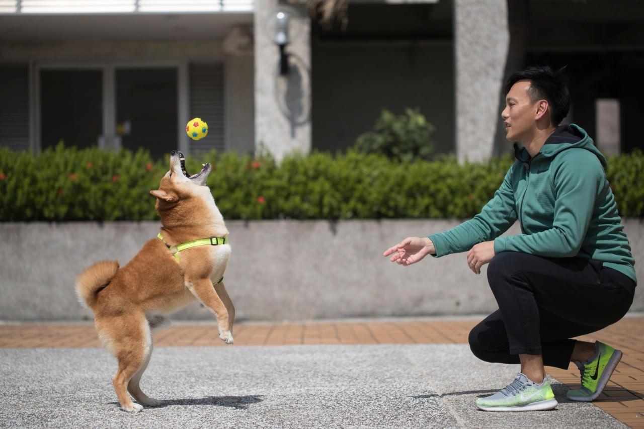 得得非常親人,但與Alan從前一樣,十分怕狗。(余俊亮攝)